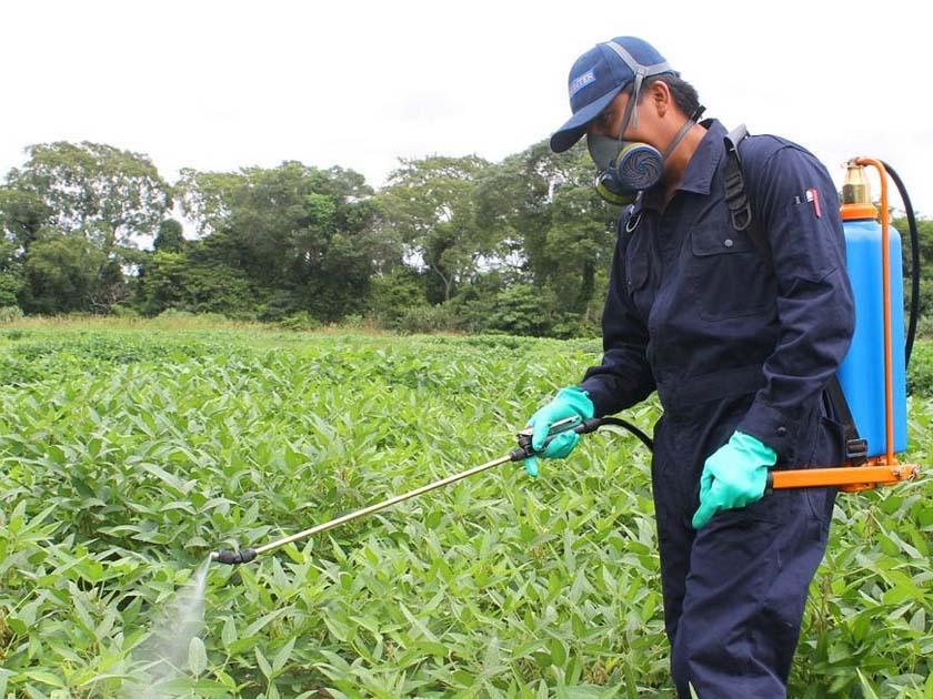 Aplicador/a de produtos fitosanitarios (nivel básico)
